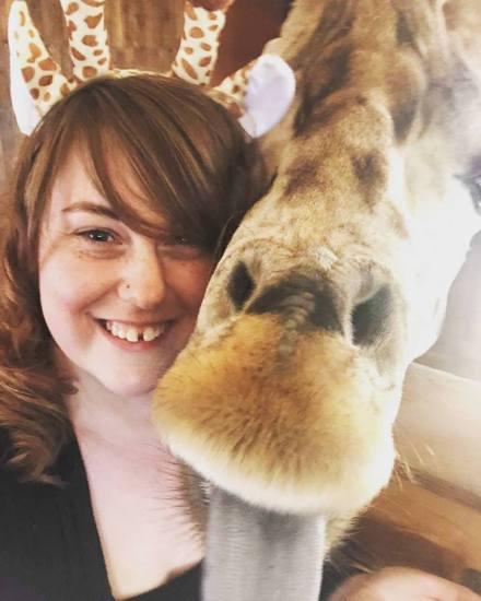 bek giraffe
